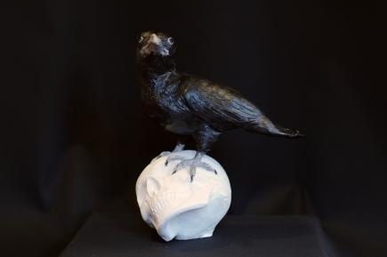 Raven skull 3
